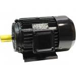 Trifazis asinchroninis elektros variklis 11kW (Y-160M-4)